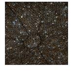 Кепка STETSON арт. 6840606 HATTERAS DONEGAL EF (черный / синий)