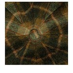 Кепка STETSON арт. 6840327 HATTERAS LAMBSWOOL CHECK (коричневый / бежевый)