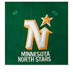 Бейсболка AMERICAN NEEDLE арт. 40742A-MNN Minnesota North Stars Blue Line NHL (зеленый)