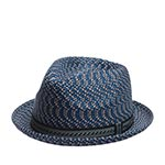 Шляпа BAILEY арт. 81690 MANNES (темно-синий)