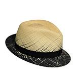 Шляпа BAILEY арт. 22753 WINNICK (бежевый / черный)