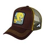 Бейсболка CAPSLAB арт. CL/LOO2/1/TIT1 Looney Tunes Tweety Pie (коричневый)