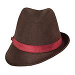Шляпа GOORIN BROTHERS арт. 100-5623 (коричневый)